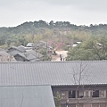 2011 1003 075.jpg