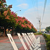 2011 1008 061.jpg