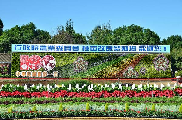 2011 1115 新社花況 097.jpg