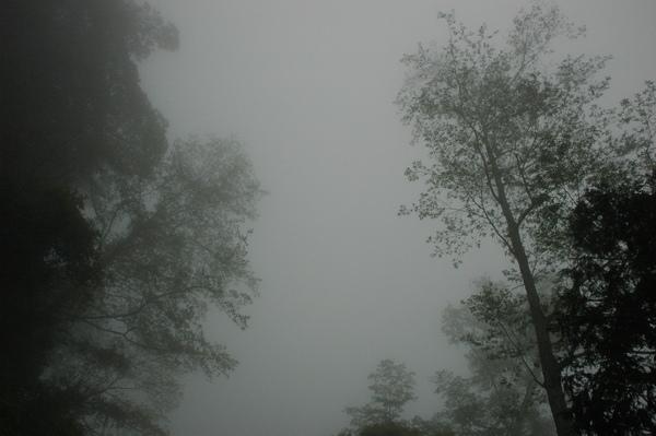 0406 大雪山 033.jpg