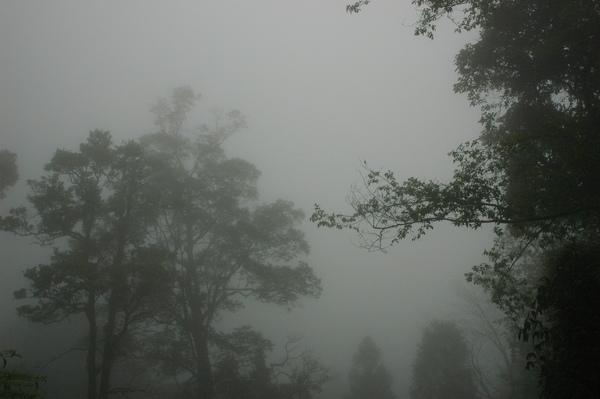 0406 大雪山 040.jpg