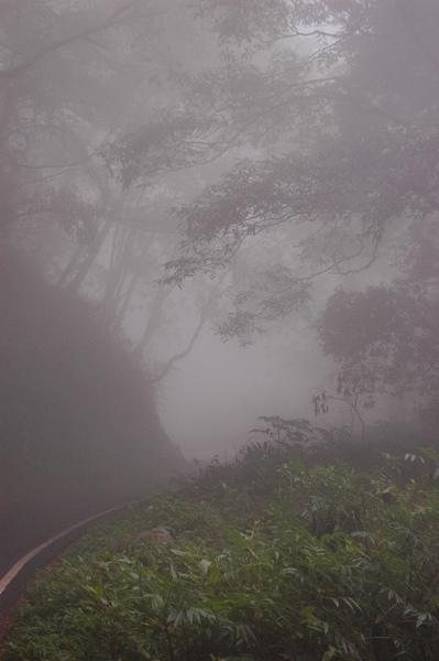 0406 大雪山 045.jpg