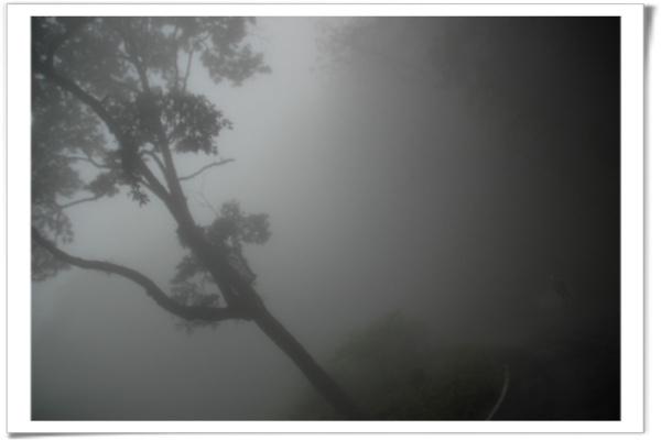 0501 大雪山 158.jpg