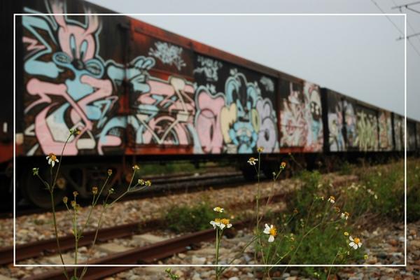 0922 火車墳場 100.jpg