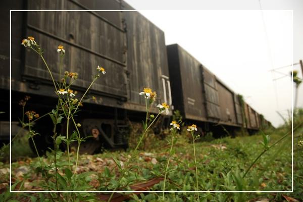 0922 火車墳場 028.jpg