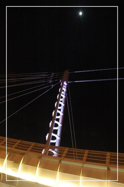 1130-沙廘之翼 163.jpg