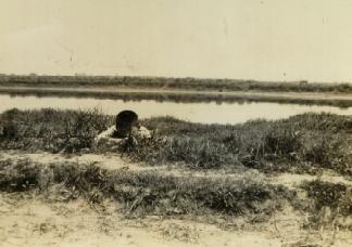 幼年時後的大漢溪畔.jpg