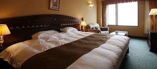 小樽城堡雙人單床1.jpg