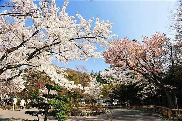 宏樂園-春