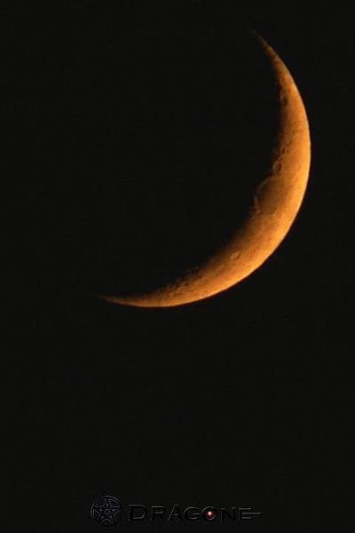 2008-09-03 06-59v.jpg