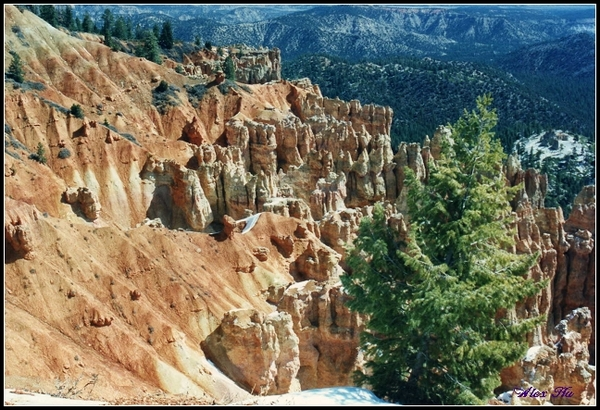 Bryce Canyon3.jpg