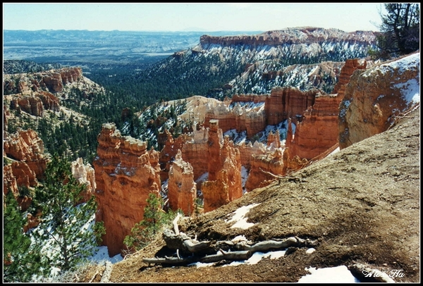 Bryce Canyon9.jpg