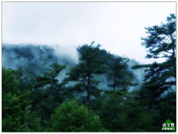 20090613台中-武陵農場 (3).jpg