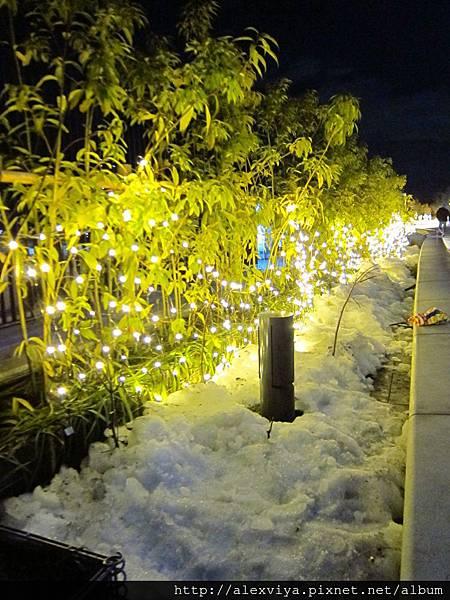 當晚很冷 週邊結冰未退