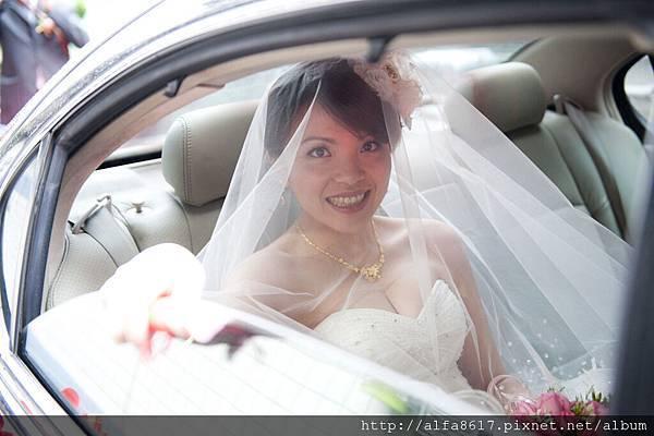 彼得兔婚禮攝影