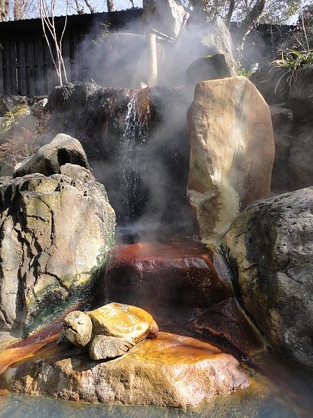 湯池源頭處的可愛龜石