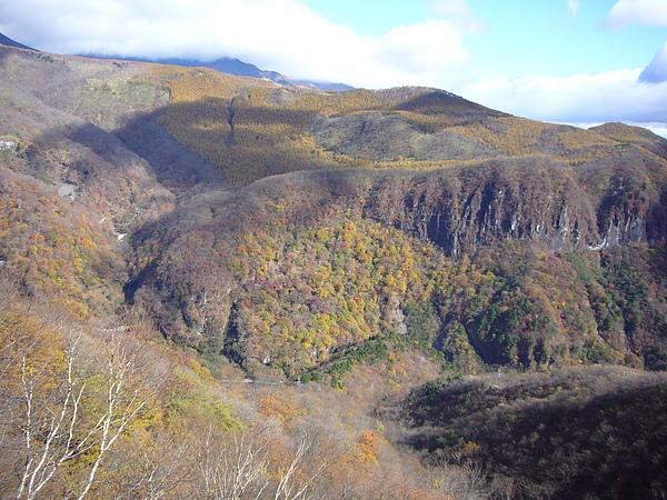 從纜車往外看是一片渲染成七彩山坡的紅葉美景