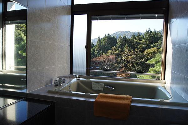 如果不敢裸體泡湯,房內浴室也可以看到一點紅葉美景