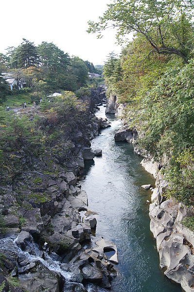 在橋上看到此等景觀只能在心中暗叫不妙,果然和日本紅葉最前線預測的一樣,嚴美溪還是綠葉,連轉紅的跡象都沒有
