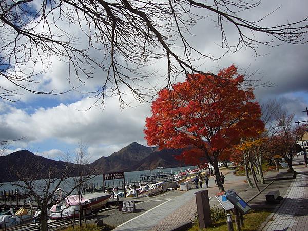 看到如此美景就不難理解中禪寺湖為何一直名列日光熱門旅遊景點