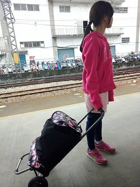 2017318 苗栗十份崠蓁愛農場_170320_0060.jpg