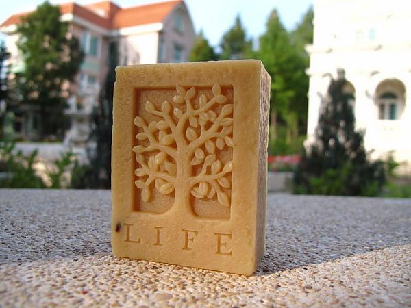 http://blog.sina.com.tw/myimages/145/41105/images/20091103231049922.jpg