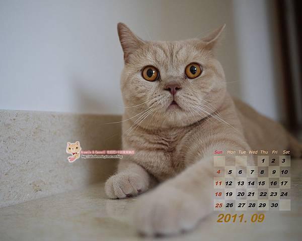 大力歐2011年9月桌布(適合1280x1024)