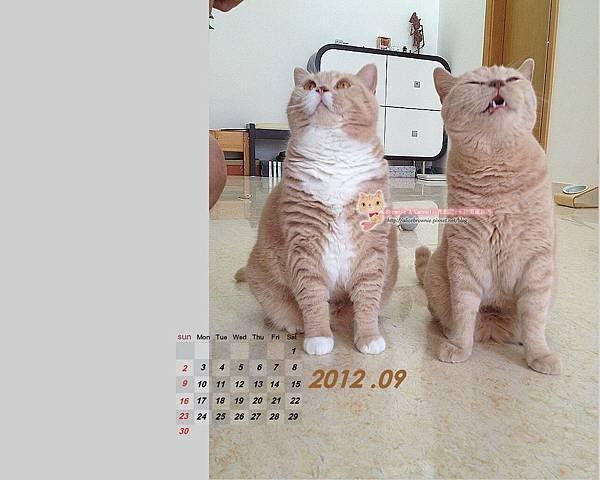 卡哥歐弟2012年9月桌布(適合1280x1024)