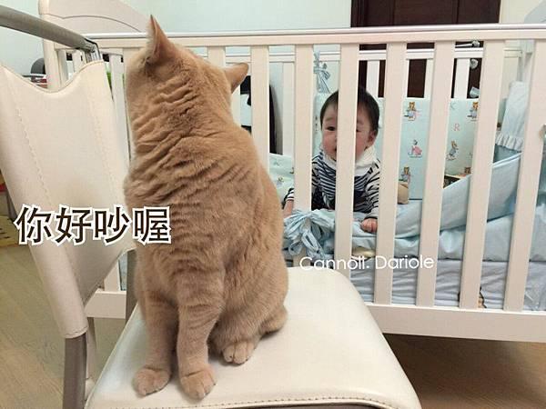 dwFi46YyZ.jpg