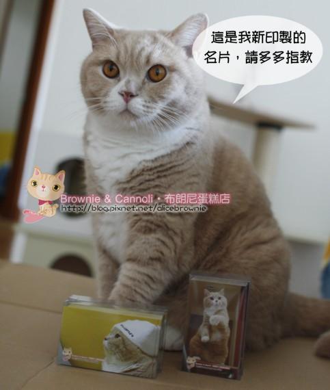 C_11343_Card.JPG