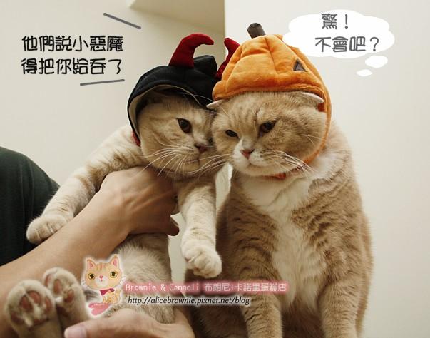 D_04324_Halloween.JPG