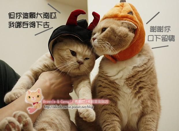 D_04326_Halloween.JPG