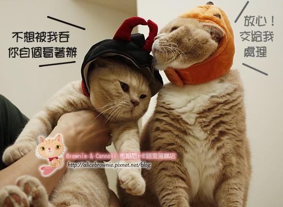 D_04327_Halloween.JPG