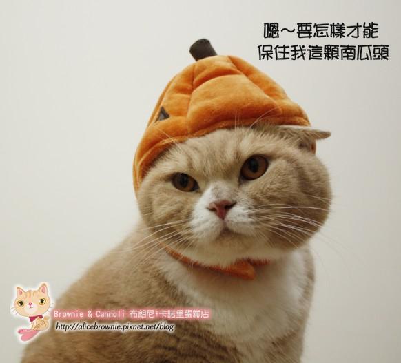 D_04331_Halloween.JPG