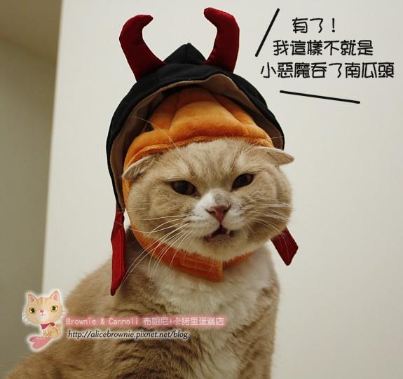 D_04311_Halloween.JPG