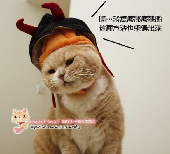 D_04316_Halloween.JPG