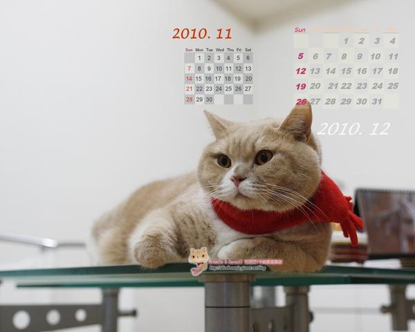 卡諾里2010年11月桌布(適合1280x1024)