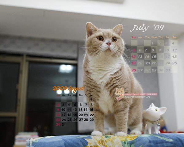 卡諾里09年7月桌布(適合1280x1024)