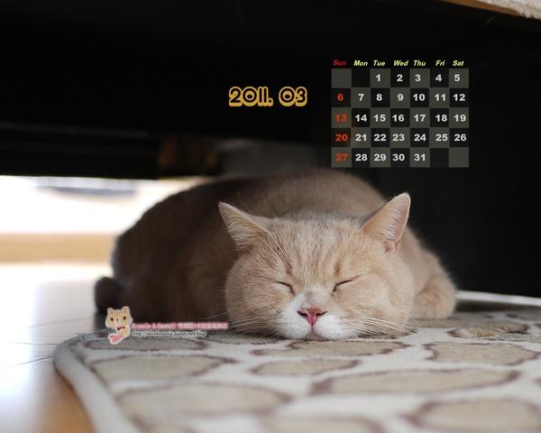 卡諾里2011年3月桌布(適合1280x1024)