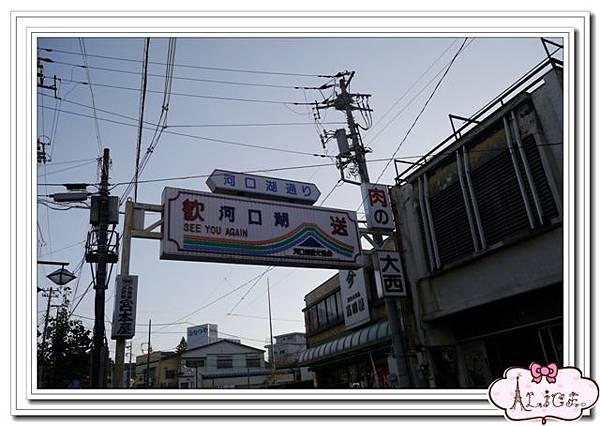 P1020763.jpg