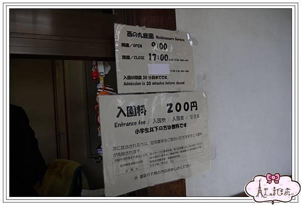 P1120085.jpg