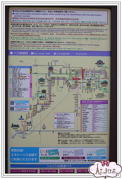 P1120801.jpg