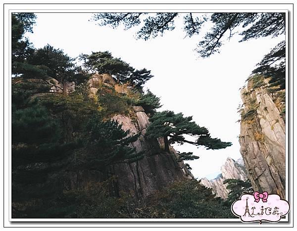 黃山景色 (1).jpg