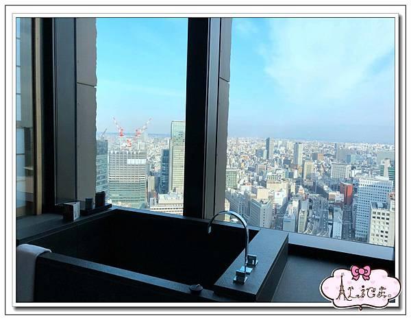 Aman Tokyo (24).jpg
