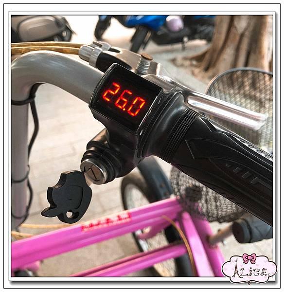樂騎腳踏車出租 (11).jpg