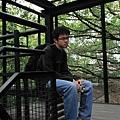 20091229_010cha.jpg