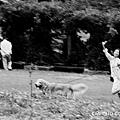 20090919武陵露營