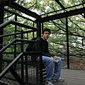 20091229_009cha.jpg