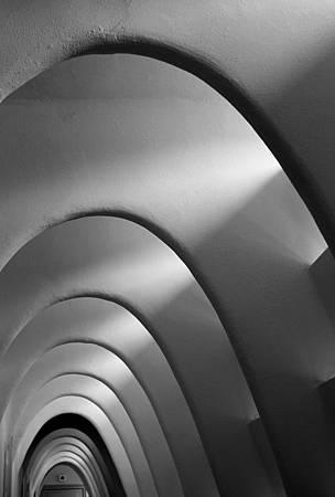 懸垂栱用來支撐建築,像鯨魚骨的結構.JPG