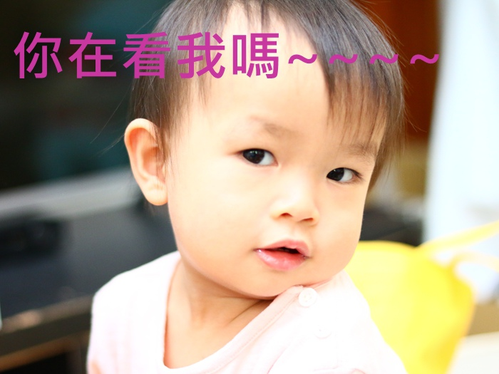 IMG_5264_副本-2